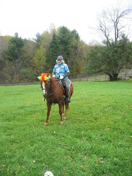 horses-costumes.jpg